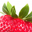 Strawberry cutting V2 — Stock Photo