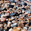 Many pebble stones — Stock Photo #8812685
