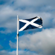 Scottish flag — Stockfoto