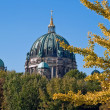 Berlin cathedral behind trees V1 — Stock fotografie