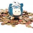 Blue piggy bank in coins V2 — Stock Photo