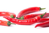 Many red peppers — Stock Photo