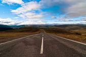 Road into the wild v1 — Stock Photo