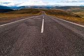Road into the wild v2 — Stock Photo