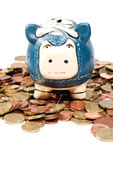 Blue piggy bank in coins V1 — Stock Photo