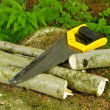 Royalty-Free Stock Photo: Well used hand-saw and firewood on the stone in forest