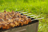 Pieces of marinated pork on barbecue — Stock Photo