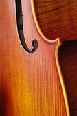Violoncello close-up — Stock Photo