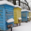 Stock Photo: Home for bees in winter, hive.