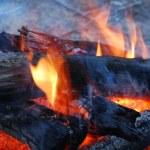 Campfire — Stock Photo #8789997