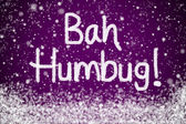 Bah Humbug Christmas Message on Purple Snow Background — Stock Photo