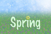 Spring Background Blue Sky Green Grass Flowers Text — Stock Photo