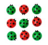 Group of ladybugs, isolated on white background — Stock Photo