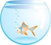 Orange fish in fishbowl — Stock Vector