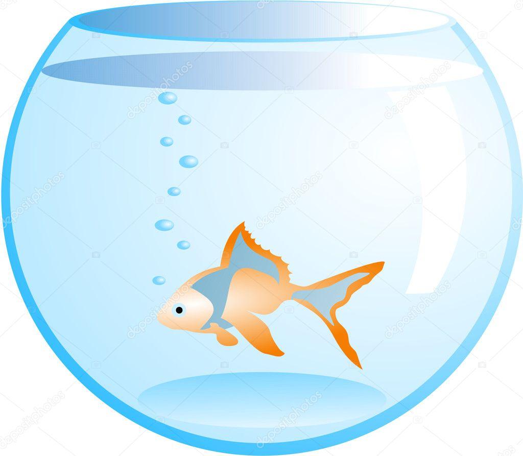 Naranja peces en pecera archivo im genes vectoriales for Peces de pecera