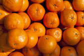Oranges, mandarins background and texture — Stock Photo