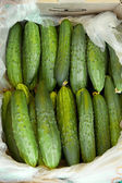 Cucumbers For Sale At Market — Stock Photo