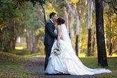 新郎和新娘接吻下树 — 图库照片
