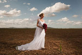 Bride in a field with blue sky and clouds — Stock Photo