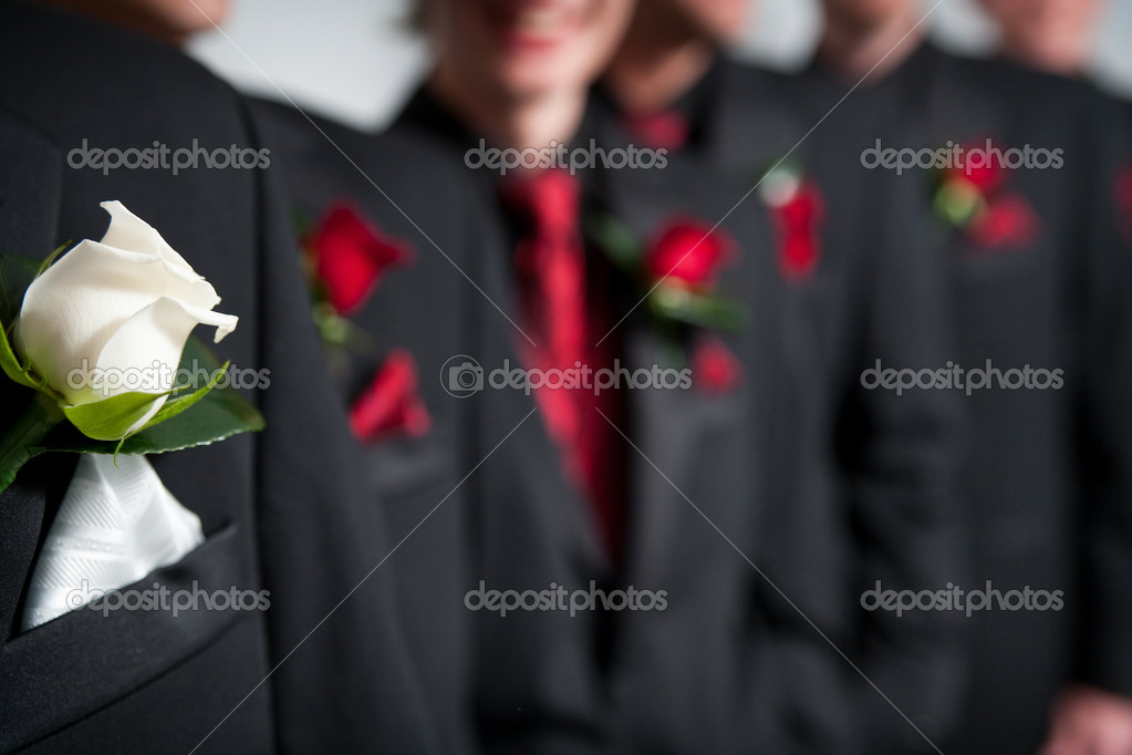 Grooms white corsage in foreground and the groomsmen with their red corsages in a row behind  Stock Photo #8863450