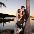Stock Photo: Newlyweds embracing under a palm tree at sunset