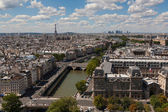 Detailed view of Paris from Notre Dame — Stock Photo