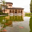 Pond with goldfish inside the Alhambra palace in Granada — Stock Photo