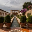 Water feature of Generalife gardens of Alhambrpalace — Stock Photo #9235014