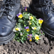 Army ankle boots and flowers. — Stock Photo