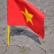 Flag of Vietnam. — Foto Stock #10443012