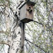 Stock Photo: Wooden birdhouse