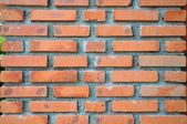 A brick wall. — Stock Photo