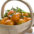 Clementine oranges — Stock Photo