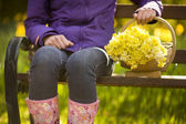 Woman with trug of picked daffodils — Stock Photo