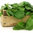 Stock Photo: Wooden box with freshly harvested spinach leaves