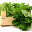 "Fresh ""little gem"" lettuce in a wooden crate — Stock Photo"