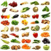 Samling av färska grönsaker — Stockfoto