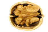 One opened walnut half — Stock Photo