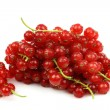 Strings of red currant — Stock Photo
