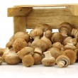 Brown champignon mushrooms coming from a wooden box - Stockfoto