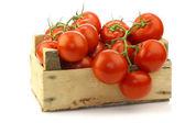 Frische tomaten am rebstock in einer holzkiste — Stockfoto