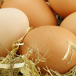 Background of brown eggs - Foto Stock