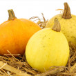 Colorful pumpkins on straw - Stockfoto