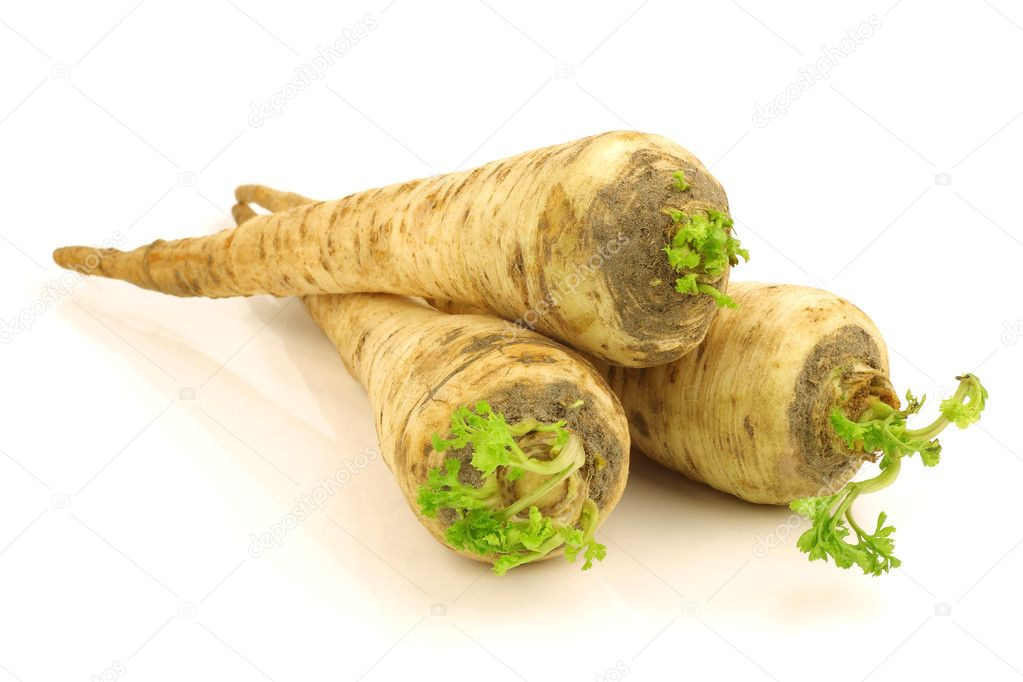Freshly harvested turnip rooted parsley (Petroselinum crispum var. tuberosum) on a white background — Stock Photo #9254647