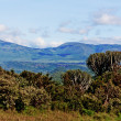 The Great Rift Valley - Stock Photo