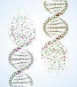 DNA molecule — Stockvector