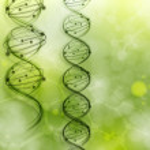 DNA molecules — Stock Vector #9807588