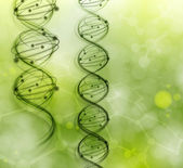 DNA molecules — Vector de stock