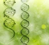 DNA molecules — Stock Vector