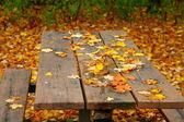 Stół piknikowy — Zdjęcie stockowe
